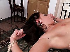 Brunette Lindsey Olsen and Teena Lipoldino are in the mood for pussy munching