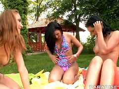 Lara, Lilly and Lulu get a tad freaky while enjoying a pleasant picnic. They twist their legs around each other while they stroke each other´s clit.