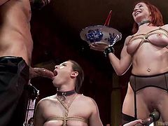 Casey and Sophia love some old style bondage sex. They love it, when their man can keep them in control. Watch these two sluts take turns to swallow sexy Karlo Karrera's dick and then his cum. They love it when their man drills them with his hard and long dick. The two girls are adventurous and make sure they play games with each other too, by inserting a toy in the holes.