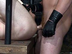 When Connor got a couple of guys back to his sex cave, he was sure it'd be a big day of rough fucking and sucking. He ties the two sex slaves and gags them, but not before he has tortured them, by laying both the hunks on a bed of ice. Turns out he loves this sort of thing. He then whips their asses, before shoving his big and hard cock in one of the exotic asses.