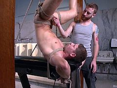 Conner loves men. That's why when he called upon his boyfriend, he made the most of the opportunity. The executor hangs him upside down, makes sure it pains and then inserts a black dildo into his tight ass. He knows, Connor is enjoying it despite the pain. The redhead takes the dick in his mouth and gives his man some pleasure, before taking the cock in the hand, and giving it a good shake.