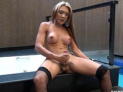 Transsexual babe gets real horned up and her nipples are hardened, besides her tranny cock. Now, ladyboy wearing heels and stockings, finds no one to play with. So she starts play solo. Watch this shemale chick, playing with her tight ass and awesome tits, while she's also busy in jerking off.