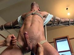 Justin Beal got himself in some trouble with two gay men. But he had no idea what lay ahead of him. The guys tie him up to a stand and touch and shake his dick. They get a kick from his pain and taking his hard and erect cock in their mouths. When they think they have had enough sucking, they get down to some more serious business, which leaves them happy with satisfaction.