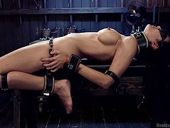 Beretta lays on her back, while her hands and legs are strongly tied up. She's completely naked and helpless. The brunette bitch with fascinating tits moans of pleasure and pain, while an executor keeps whipping her breasts and lusty cunt. Click to see the kinky details!