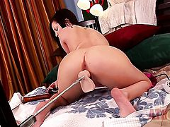 Brunette asian Brandi Belle with tiny tits and clean bush shows her love for masturbating