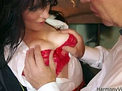 harmony vision young harlots anal lessons
