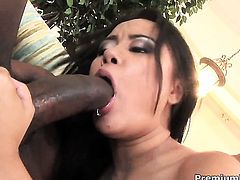 Annie Cruz gets a good hard fucking in interracial action