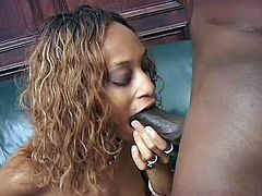 Are you interested in playful ebony bitches? A curly-haired slut with slim body, small lovely tits and appetizing ass appears nude in front of her horny partner, who seems eager to taste her cunt. Click to watch this seductive lady spreading legs and sucking cock right down to the balls.