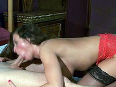 Charming brunette Lizz Tayler ni red and black lingerie loves oral sex so much. She gets her sweet pussy eaten out and then gives hot blowjob her hard dicked fuck buddy will never forget!