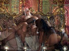 Katsuni, Kiara Mia and Nina Mercedez are three exotic black haired lesbians with perfect boobs and tight pussies. They have a wonderful time playing with each others tight holes in lesbian 3some.