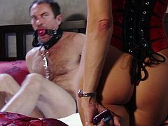 Female domination with sexy Jessica Drake