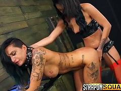 A tattooed slut with long black hair and lovely boobs has been handcuffed. This slave also wears a neck collar and a leash is attached to it. The dominant bitch persuades Alby to suck the strap on, she's wearing, then stuffs it in her crazy ass. Don't miss the inciting lesbian scenes!