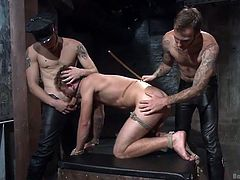 Two tattooed guys wearing leather pants use the naked man, exiled in the basement, for their own fun. Click to watch the naughty stud bonded and gagged, while his buttocks get red from so much spanking. See him sucking cock and fucked hard from behind.