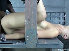 Spit covered slut in bondage fucked in her slave pussy