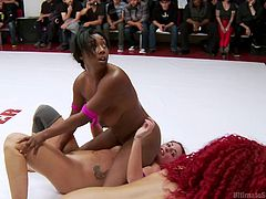 Savannah, Lisa, Daisy and Angel are sexy lesbians, who are a bit wild. When it comes to sexy, you can't expect the usual from them. Watch these chicks fighting on the wrestling floor. They suck pussies and entangle their bodies, to feel each other naked. These sluts are truly enjoying the company.