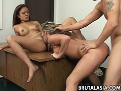 Two super hot sluts are having a fuck with a fat dick man. He enters the pussy and he enters botch of them. He even licks up Annie's wet pussy like a boss.