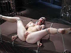 This blonde milf with nice big tits became the slave of a horny guy, that tied her up with strong ropes. She's also wearing a ball gag, so her screams of pleasure cannot be heard, when he stuffs a kinky dildo in her appetizing shaved cunt. Enjoy the hot details!