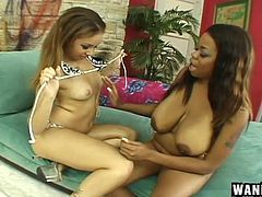 This huge dildo and those immense hooters met no accident. It is a sign from above and I'm sure, they will not lose time in vain. If you love ebony babes, enormous boobs & wet pussies... You are welcome!