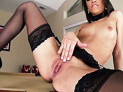 Experienced vixen Veronica Rodriguez has some time to stroke her love box