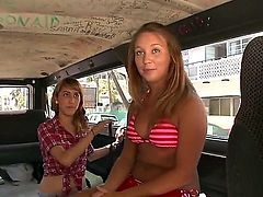 Brunette and blonde are in the back of a van, playing with one another and also with a guy that they are with in a threesome. see them sucking some cock.