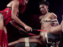 Nikki Darling is in one heck of a position. She's naked with her legs gaped wide open, bound by ropes and straps. The Nubian slut is getting worked on by Daisy, who has a variety of electric toys to bring stimulation, pleasure and a little bit of pain thrown in for good measure. Watch the shocking action!