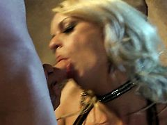 Stormy Daniels polishes lucky dudes rock hard cock with her lips