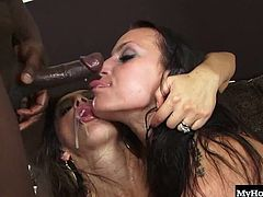 but they really want a cock to share. When the black man arrives hes just what they were waiting for and soon hes licking pussy and theyre sucking on his long hard cock. He fucks them each one after the other and the girls take the facial cumshot together.