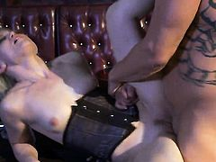 Ash Hollywood spends her sexual energy with rock hard meat stick in her mouth