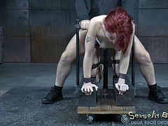 Violet is secured to a bondage device, with her body bent over, courtesy of Jack, her excecutor. She's taking him in her mouth, while getting her pussy pumped from behind. It's almost like she's being spit roasted. The little slut gets a brief reprieve, only to have the other guy putting a vibrator to her.