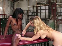 Ebony girl Ana Foxxx with hairless pussy and blonde Carissa Montgomery in black stockings kiss and lick each other in interracial lesbian action. Watch them have black on white lesbian fun!