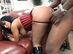 This fat ass ebony goddess can twerk like a champ when she is on top