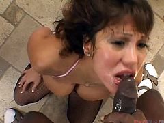 Dirty Asian MILF Ava Devine sucks her lover's BBC like a champ
