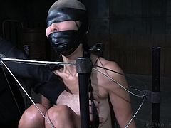 Marica has been into bondage earlier, but she's never done anything this intense before. She's locked into a couple of special bondage devices, and her mouth is always gagged. I guess that's expected, especially when you shove a dildo on a stick up her ass. You want to keep the noise down, and she's loud.