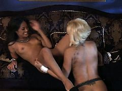Kaylani Lei lets Briana Blair stick her tongue in her lesbian love hole