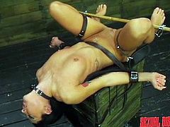 A slutty babe was bonded and gagged, as a horny dominant guy explores her peachy cunt. The man uses a kinky dildo to arouse this naked brunette bitch. Disgrace continues with whipping and fucking, as she has no other way than spreading her legs widely, as the guy wishes. Dare to watch and have fun!
