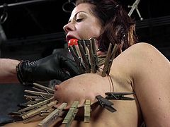 It looks like the sun with plurality of rays around, but it does not seem so sweet to Holly. It is terribly painful, but she even can not move, to help herself. With a ball gag in her mouth and clothespins on her big swollen tits, she has no other way, than to obey.