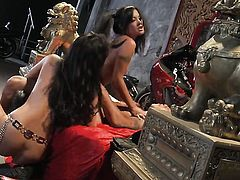 Asa Akira spends her sexual energy with sturdy boner in her mouth