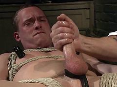 He started with his nipples, licking them sensually, then moved on his belly, rubbing and kissing it gently. His cock was already erected and red, because of two electric vibrators, which were working on him restlessly. In tight latex mask and tied in ropes, Tommy just beggs to cum. Have fun and enjoy!