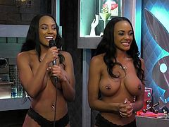 In this episode of Morning Show, our busty ebony playboy models will give us advices, how to apologize properly. If you have no opportunity to suck his cock, as an excuse, you should, at least, to say the right words, but topless and seductively. Watch and learn! The most beautiful babes with the biggest titties here!
