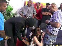 Bella starts sucking down on each huge black cock that's thrown at her. Each thrust of black cock into her soaking wet pussy. She discovered the power of big black cocks...
