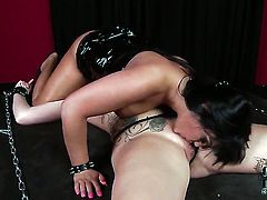 Jasmine Black with juicy hooters and smooth beaver is in heaven fucking with hard cocked fuck buddy in hardcore action