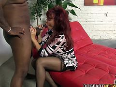 Married cougar, Sexy Vanessa dreams about big black cocks. She licking and sucking every inch of Rico's gigantic black cock. Sexy Vanessa rode Rico's big black cock until her bombed her pussy...