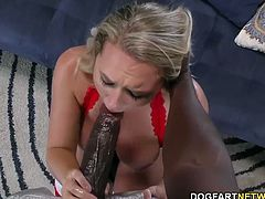 Busty Brooke Wylde gets her throat and tight pussy fucked by big black cock...