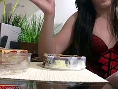 Here is a naughty shemale that really knows how to enjoy her sweet desserts. Julia Boeira is a black haired t-girl that has a sweet tooth for chocolate. She looks very lovely sitting at the table …
