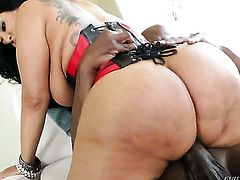 Chica Lexington Steele gets down on her knees to be face fucked
