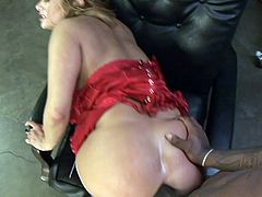 Master releases the slut from a box and fucks her