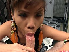 Young Thai tranny upskirts and pulls down her demin miniskirt. Then she falls on her knees and gives a blowjob. At the final Luktan cums over guy's cockhead, lick all her own cum and gets bonus mouthful from tricky guy.