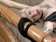 This couple knows exactly what each other likes. She is hogtied and he plays with her body and makes her feel pleasure.