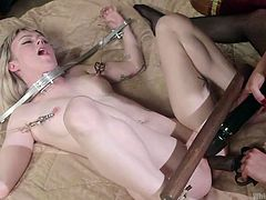 Cherry has all sorts of toys and devices for submissives, and Anna learns this very well. She gets a big black dildo stuffed in her mouth and pussy, she's in steel stocks, and she's released only to be put over her mistress' knee, and spanked really hard.