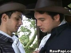 Gay Latinos Super Hot bareback Sex. Cute latino gay masturbates his cock when his co-worker saw him. His coworker likes what his doing and offered him a sex. They do hard anal fucking at ranch and suck their cock deep throat until their cum comes out
